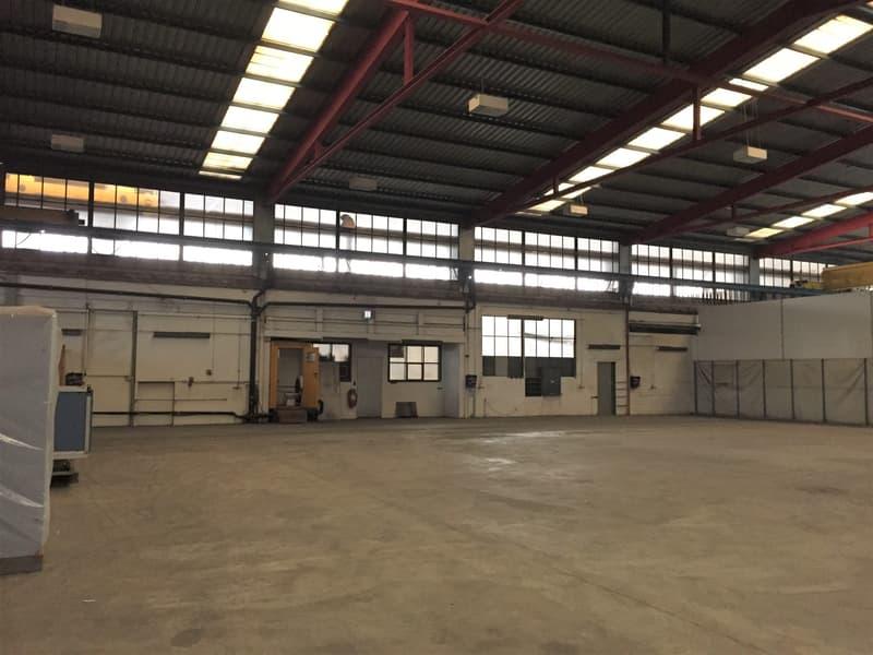 Industriehalle/Produktionshalle mit Deckenkran, ebenerdig befahrbar!