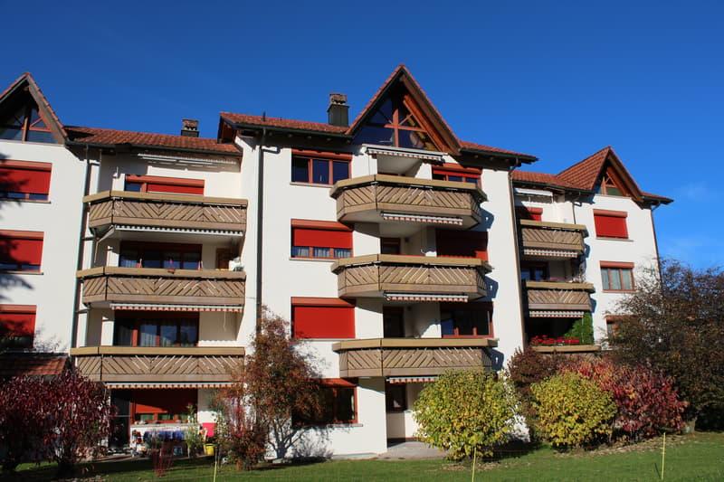 Frisch renovierte grosse 2.5-Zimmerwohnung, 65m2, Eigentumsstandard, in toller Umgebung zu vermieten