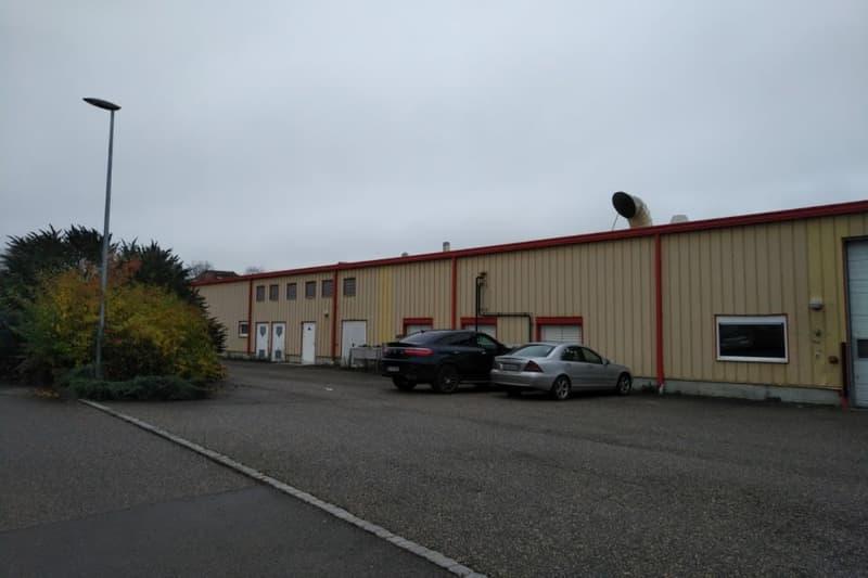 Halle de production alimentaires en vente à Granges-Marnand.