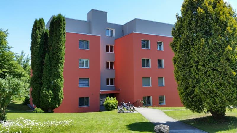 Frisch sanierte 3.5-Zi. Wohnung in ländlicher Umgebung