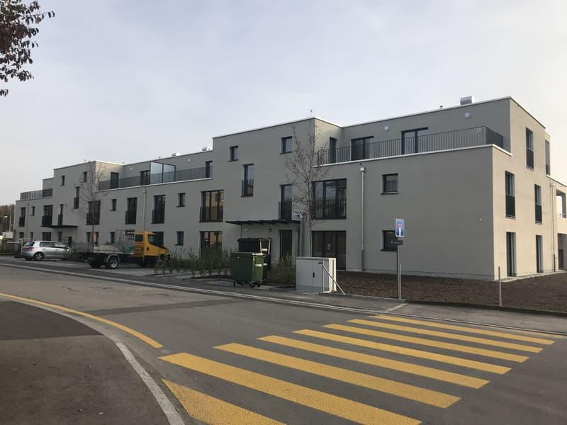 Schöne 2.5-Zimmer-Wohnung zu vermieten