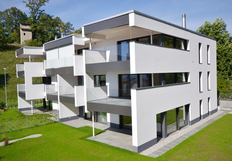 Appartamento In Vendita A Montagnola Homegate Ch