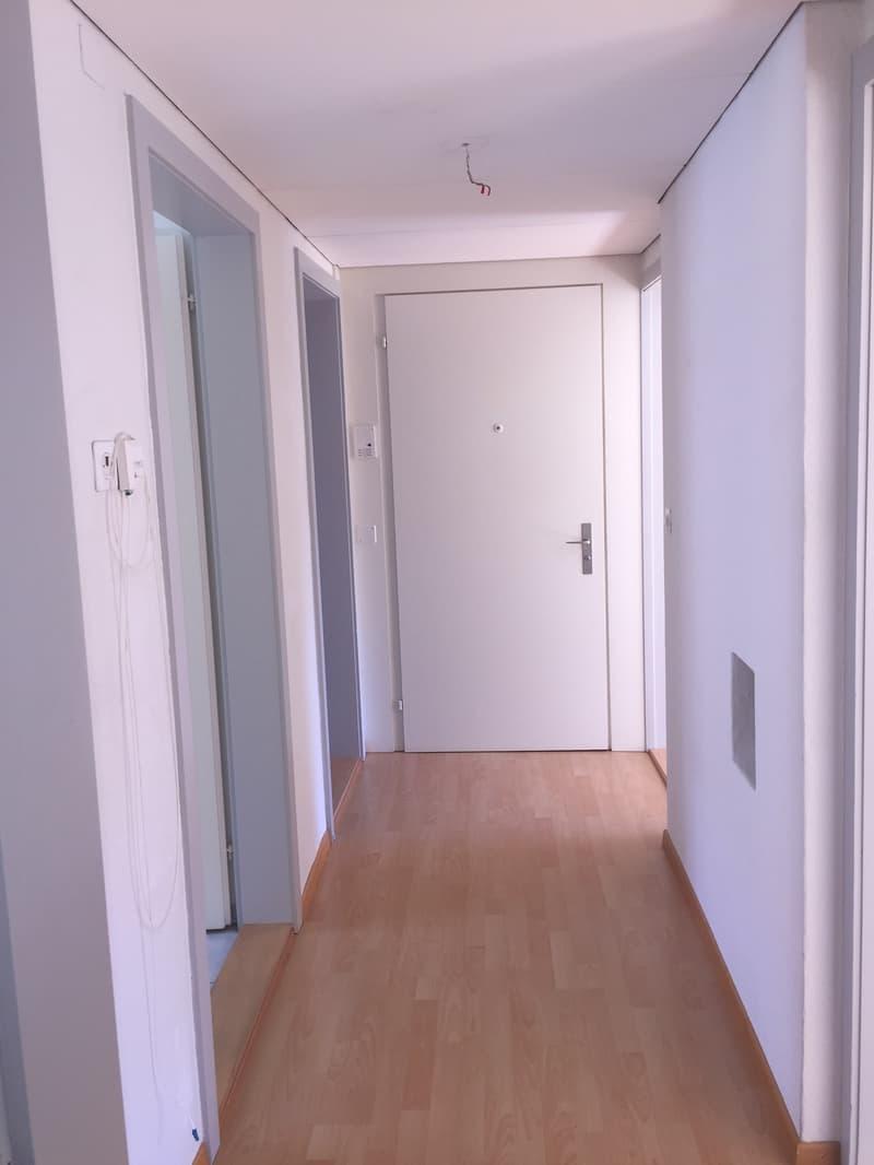 Heimelige Wohnung in ruhigem Quartier (3)