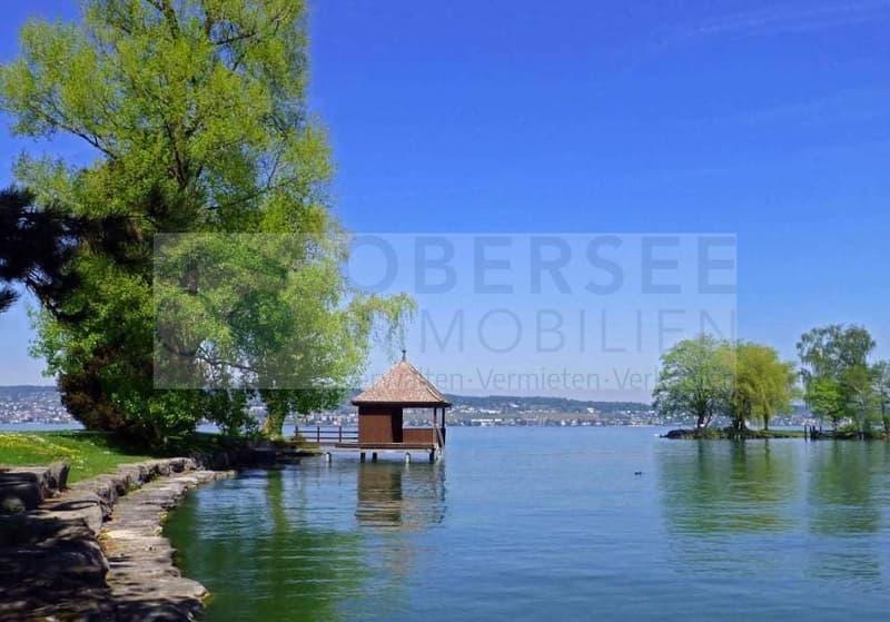 Steuersitz mit Park am See - Wohnen mit Privilegien
