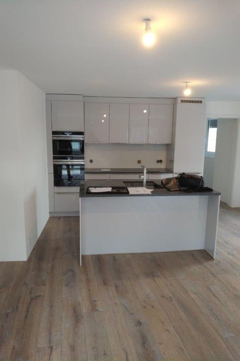 A vendre, centre-ville Neuchâtel, duplex de standing en attique - neuf - 4.5 pièces - terrasse 60 m2