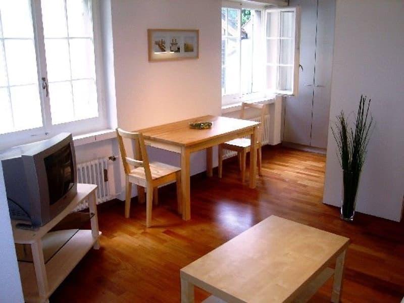 Möblierte Wohnung mitten im Herzen von Zürich mit Dachterrasse / Roof (2)