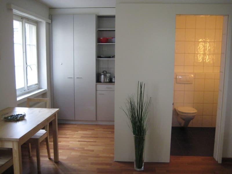 Möblierte Wohnung mitten im Herzen von Zürich mit Dachterrasse / Roof (4)