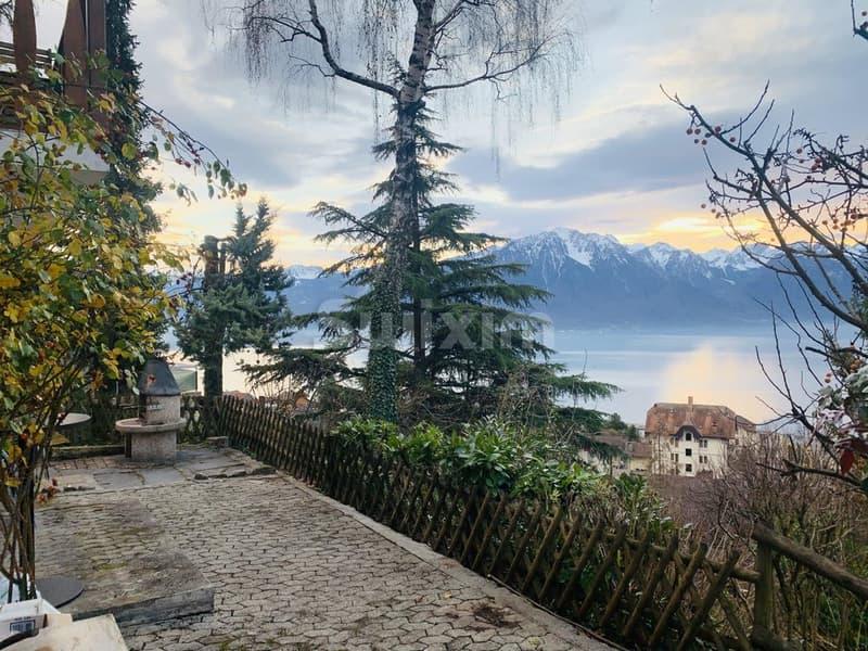 Vue magnifique Lac et montage