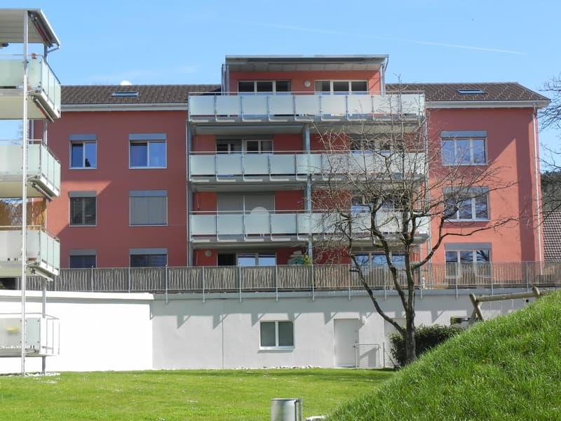 Ganztags besonnte 3.5 Zimmer-Wohnung in Hadlikon - Hinwil mit einer grandioser Terrasse von 45 m2