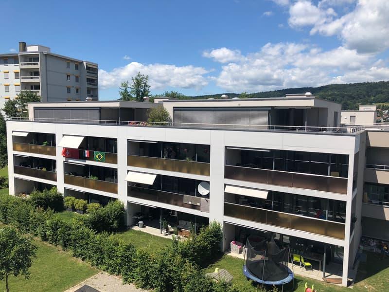 Moderne 2.5-Zimmer-Attika-Wohnung mit traumhafter Terrasse