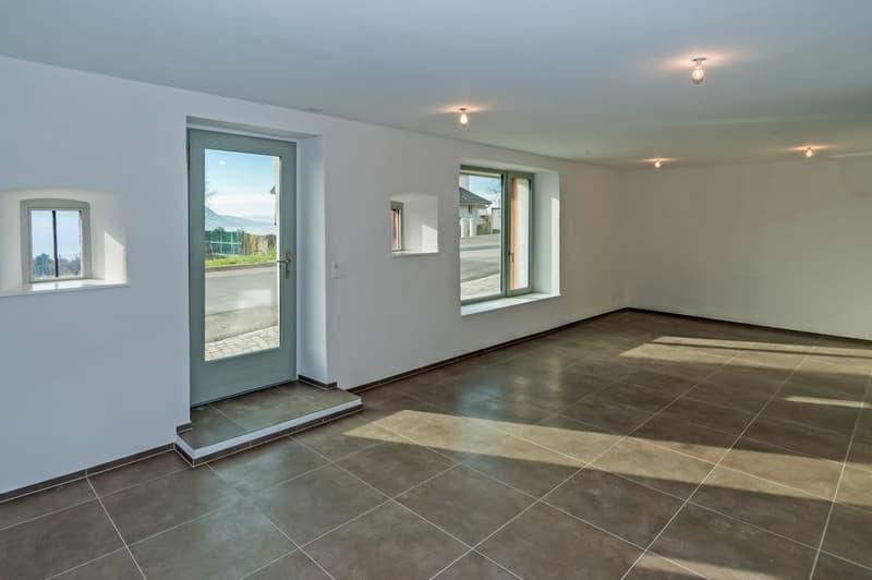 Appartement de 3,5 pièces  avec vue lac et cachet