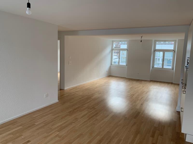 Letzte 2.5 Zimmer Wohnung (Erszbezug) im Luzerner Trendquartier (4)