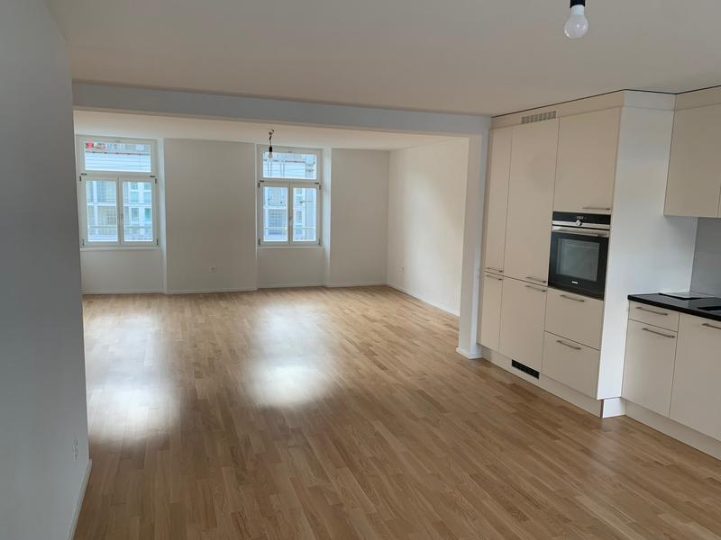 Letzte 2.5 Zimmer Wohnung (Erszbezug) im Luzerner Trendquartier (3)