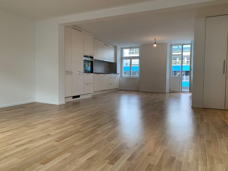 Letzte 2.5 Zimmer Wohnung (Erszbezug) im Luzerner Trendquartier (1)