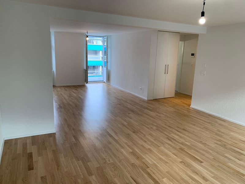 Letzte 2.5 Zimmer Wohnung (Erszbezug) im Luzerner Trendquartier (2)