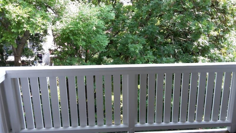 Attraktive 3-Zimmerwohnung mit grossem Balkon ins Grüne. (2)