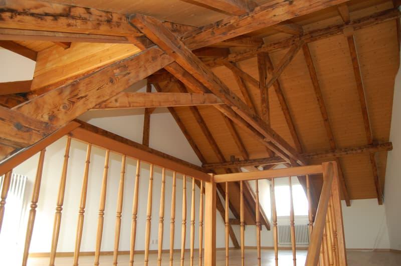 Attraktive Maisonette-Dachwohnung im Gundeli mit Blick aufs Bruderholz. (3)