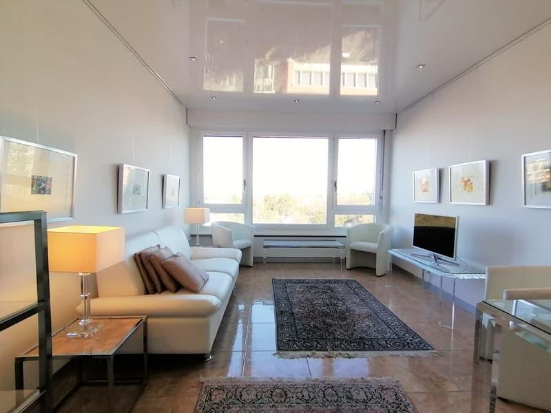 Magnifique appartement meublé de 63m2.