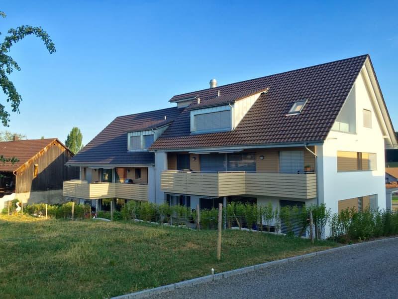 Stilvolle Dachwohnung mit Blick ins Grüne