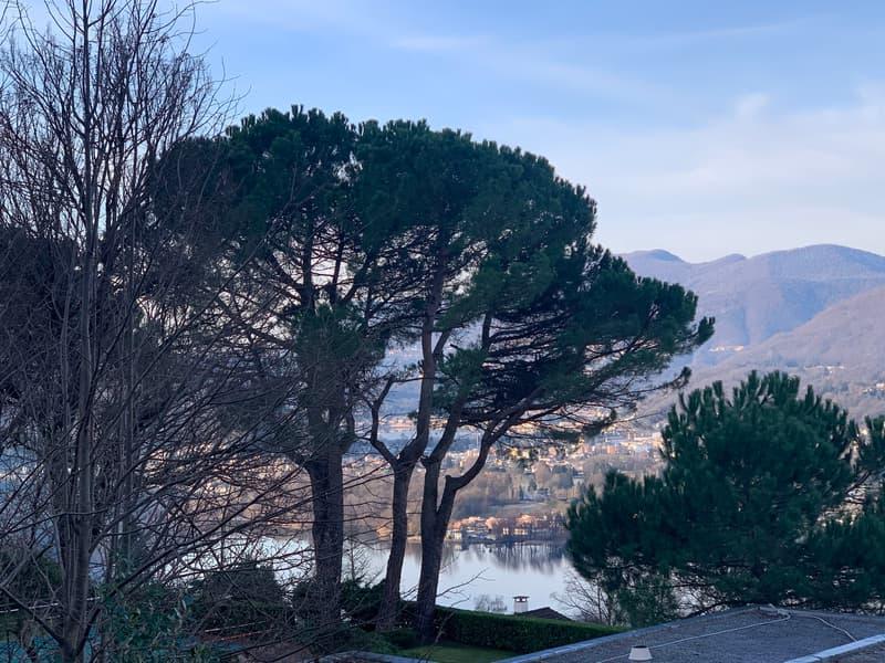 Montagnola | Elegante | Immerso nella quiete