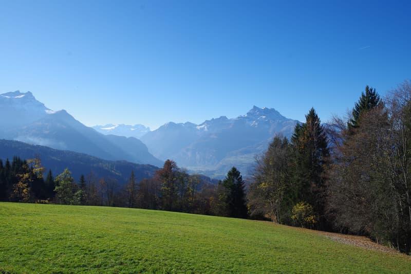 A proximité des commodités, vue imprenable sur les Alpes