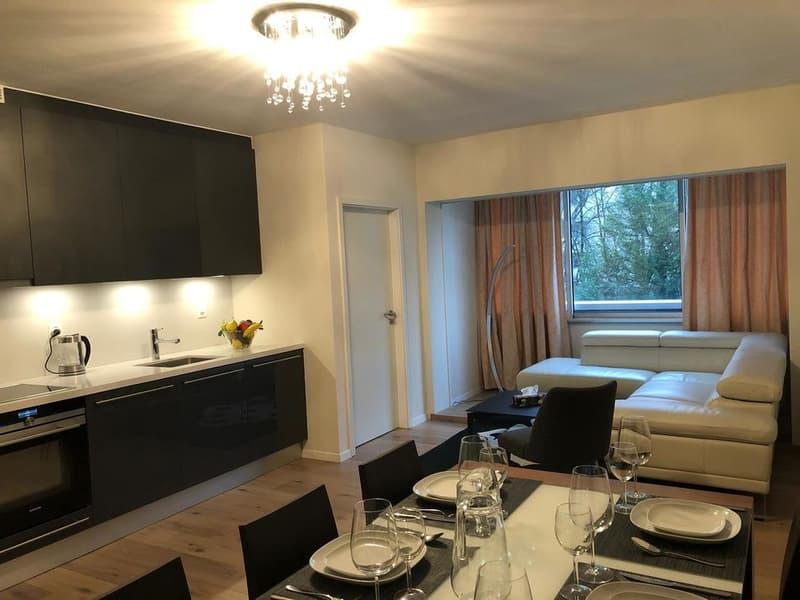 A Louer, appartement rénové et meublé de 50m2