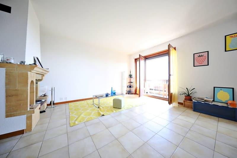 Magnifique appart 2,5 p / 1 chambre / 1 SDB / balcon vue lac