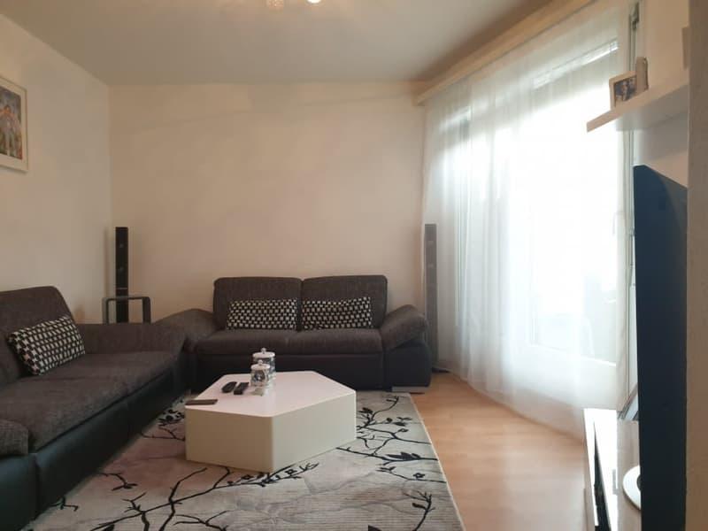 3,0 Zimmer-Wohnung 2.OG mit grosszügigem Balkon
