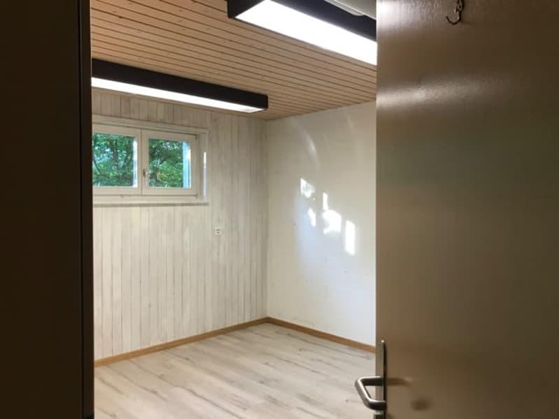 attraktiver Arbeitsraum für Atelier / Büro /Praxis / Hobby an zentraler Lage in Rapperswil