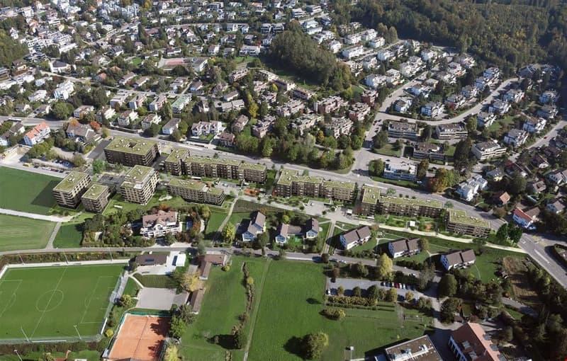 Ein Quartier entsteht; www.leuengarten.ch