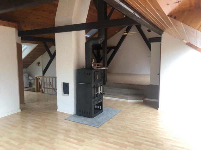 Sehr grosse und helle 4 1/2 - Zimmer Atikawohnung mit Top-Ausstattung.