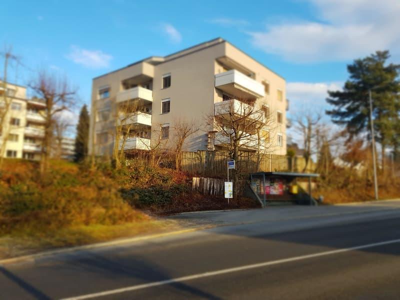 In Hägglingen 2,5 Zi. und 3.5 Zi. Whg. an sonniger Lage (2,5 mit Gartensitzplatz)