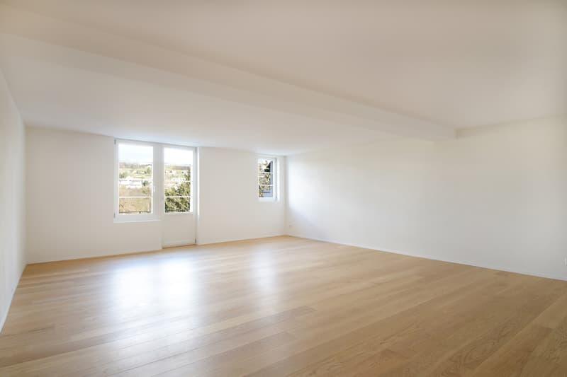 Erstbezung nach Renovation, einzigartige 3.5 Zimmer Altstadtwohnung (4)
