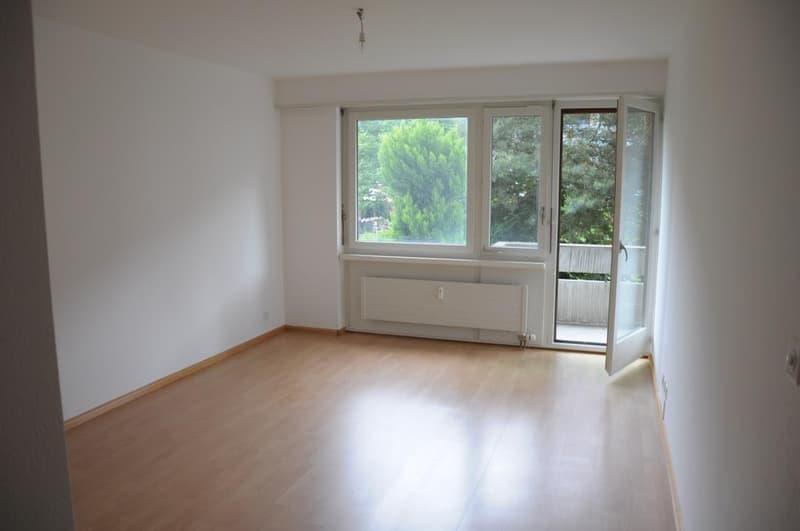 3,5 Zimmerwohnung in Riehen