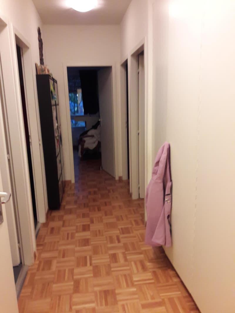 A louer appartement 5 / 6 pièces Malagnou (4)