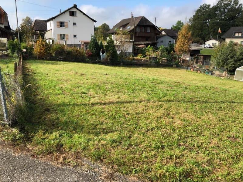 Grosse Baulandparzelle in Roggwil an top Lage zu Verkaufen