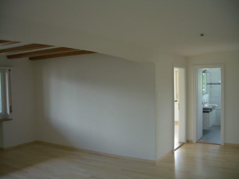 komfortable 5 1/2-Zi.-Wohnung ca. 125m2 mit Terrasse 45m2 und Zusatzzimmer 15m2