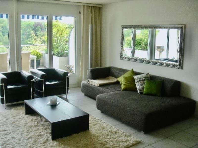 Helle und moderne 2.5 Zimmer Attika-Wohnung mit Sonnenterrasse nahe der Reuss