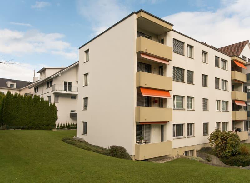 Renovierte Wohnung mit Ausblick Richtung Dorfzentrum