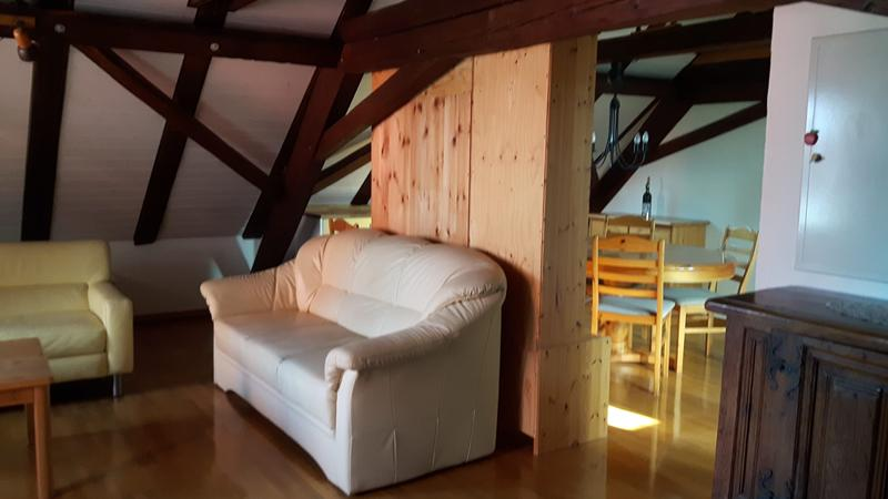 !! Nichtraucherwohnung !!  Altes Bauernhaus totalsaniert (3)