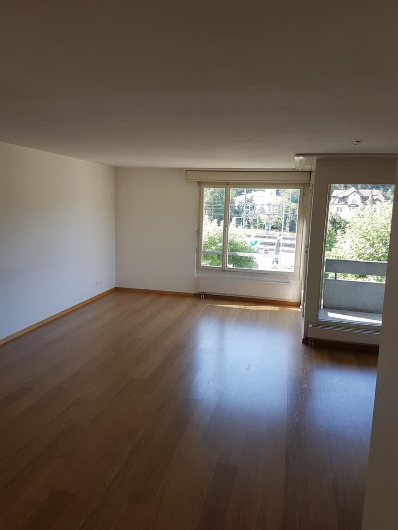 Helle, grosszügige und renovierte 3-Zimmerwohnung