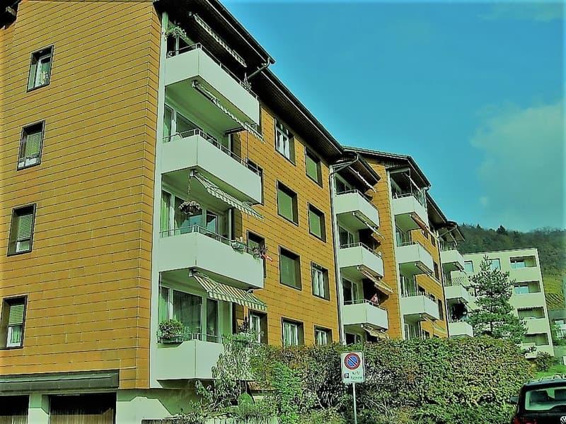 3.5-Zi ruhig,sonnig,renoviert,ruhig,günstig mit Balkon+Super-Aussicht