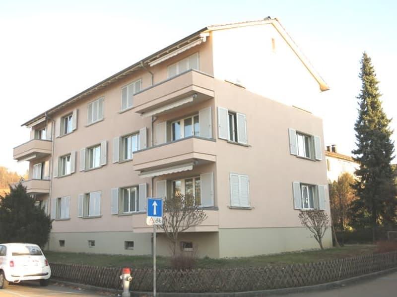 Grosszügige 4.0-Zimmer-Wohnung mit 2 Balkonen im beliebten Brugger Wohnquartier
