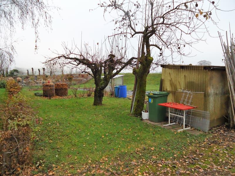 Erschlossenes Wohnbauland (geeignet für ein freistehendes EFH) in der Kernzone (1)