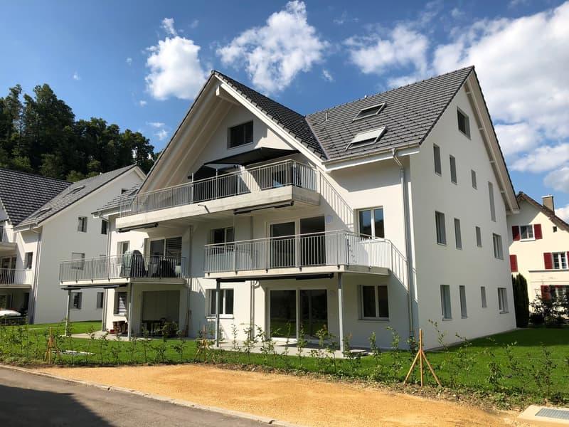 4.5 Zi-Maisonette-Dachwohnung in neuer Überbauung