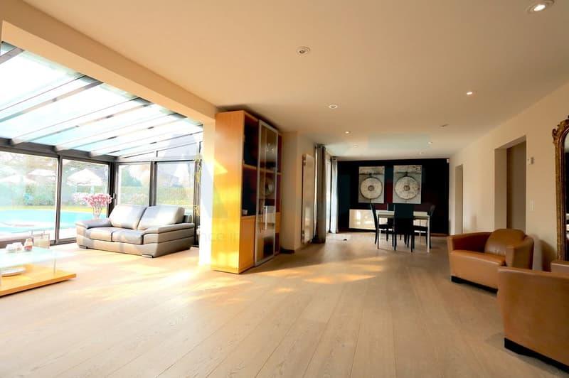 Magnifique villa entièrement rénovée à Vessy (2)