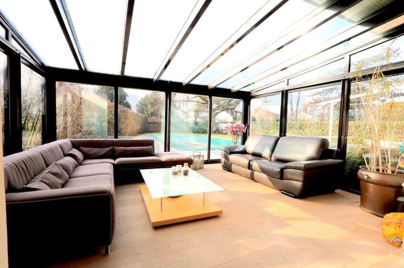 Magnifique villa entièrement rénovée à Vessy (4)