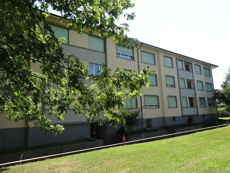 Grosszügige und helle 3 1/2 -Zimmer Wohnung mit Balkon