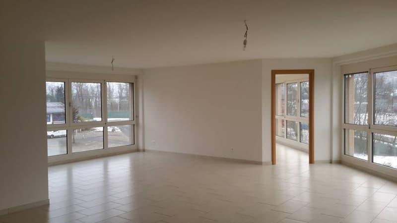 Spacieux appartement de 3 pièces
