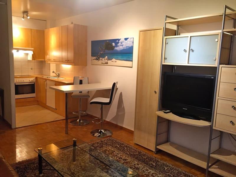 Appartement meublé 2 pièces à Lausanne (1)